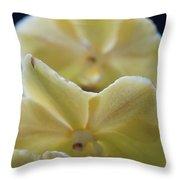 Vanilla Orchid Throw Pillow