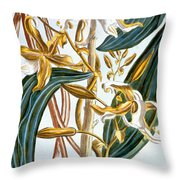 Vanilla Pods Throw Pillow