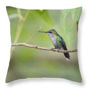 Vanishing In Nature.. Throw Pillow