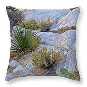 Varied Desert Flora Along Barker Dam Trail In Joshua Tree Np-ca Throw Pillow