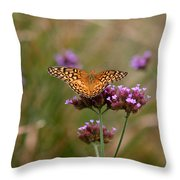 Variegated Fritillary Butterfly In Field Throw Pillow