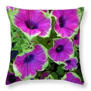 Variegated Petunias Throw Pillow