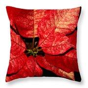 Variegated Poinsettia I Throw Pillow