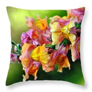 Variegated Snapdragon 2 Throw Pillow