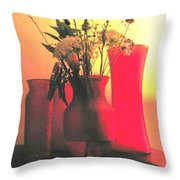 Vases And Flowers 1 Throw Pillow