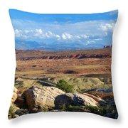 Vast Desert Landscape Throw Pillow
