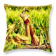 Veggin Throw Pillow