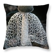 Veiled Lady Dictyophora Indusiata Throw Pillow