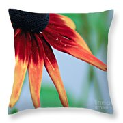 Velvet Petals Throw Pillow