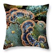 Velvet Wild Mushrooms  Throw Pillow