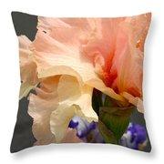Velvety Soft Vanilla And Pink Iris Throw Pillow