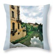 Venice Green Throw Pillow