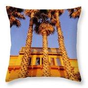 Venice Plams At Sunset Throw Pillow