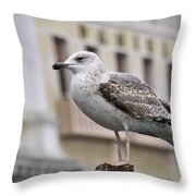 Venice Seagull Throw Pillow
