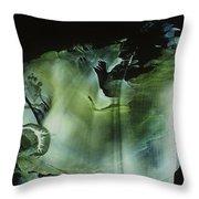 Venus Subaqua Throw Pillow