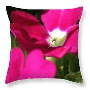 Verbena From The Ideal Florist Mix Throw Pillow