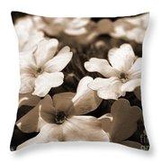Verbena Named White Hail Throw Pillow
