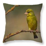 Greenfinch Throw Pillow