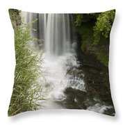 Vermillion River Falls 1 Throw Pillow