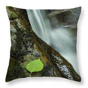 Vermont Aspen Leaf Waterfall Camels Hump Duxbury Throw Pillow