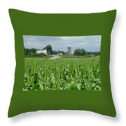 Vermont Complete Throw Pillow