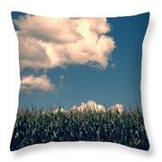 Vermont Cornfield Throw Pillow by Edward Fielding