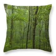 Vermont Mount Mansfield Green Forest Fog Panorama Throw Pillow