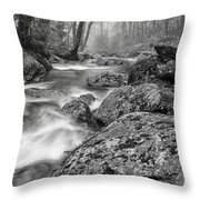 Vermont River Fog Mount Mansfield Black And White Throw Pillow