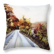 Vermont Road Throw Pillow