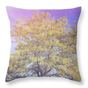 Vermont Tree Light Leak Sunflare  Throw Pillow