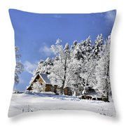 Vermont Winter Beauty Throw Pillow
