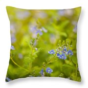Veronica Chamaedrys Named Speedwell Or Gypsyweed Throw Pillow