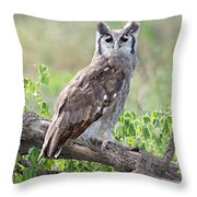 Verreauxs Eagle-owl Bubo Lacteus Throw Pillow