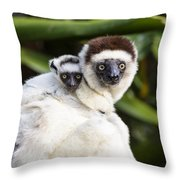 Verreauxs Sifaka With Baby Madagascar Throw Pillow