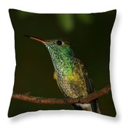 Versicolored Emerald Throw Pillow