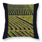 Vertical And Diagonal  Throw Pillow