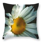 Vertical Daisy Throw Pillow