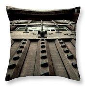 Vertical Entry Throw Pillow