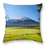 Vertical Mount Bachelor Throw Pillow