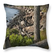 Vertical Photograph Of The Rocky Shore In Acadia National Park Throw Pillow