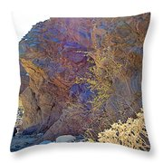 Vertical View Of Big Painted Canyon Trail In Mecca Hills-ca Throw Pillow