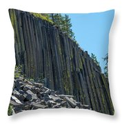 Vertical View Throw Pillow