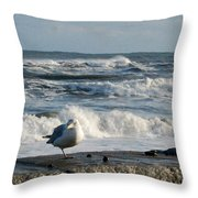 Seagull In Winter Throw Pillow