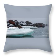 Very Cold Throw Pillow