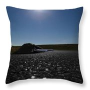 Very Hard Tarmac - Boeing 787 Throw Pillow by Marcello Cicchini