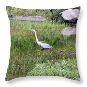 Very Hungry Blue Heron Throw Pillow