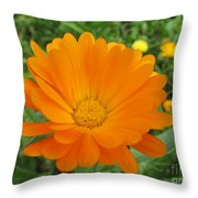 Very Lovely Orange Bloom Throw Pillow