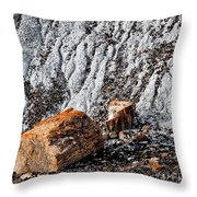Very Old Logs Throw Pillow