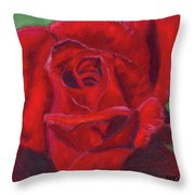 Very Red Rose Throw Pillow