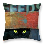 Very Supersticious  Throw Pillow